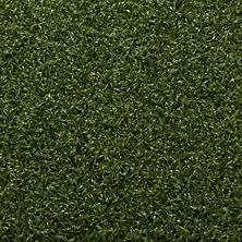 Belle Verde Del Mar Artificial Grass by Linear Foot (1' L x 15' W)