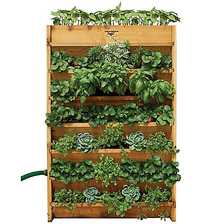 Vertical Garden 32 x 45 x 9