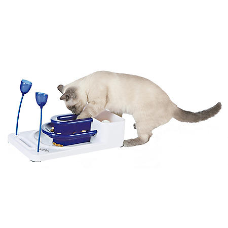 "Trixie Fantasy Board for Cats (8.25"" x 13.25"" x 6"")"