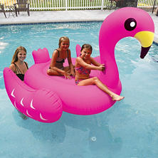 Giant Pool Float, Assorted Styles