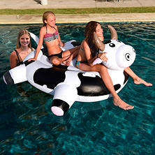 Giant Pool Float - Cow