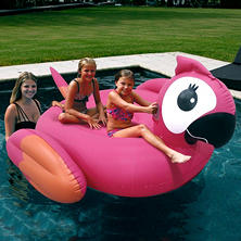 Giant Pool Float - Parrot