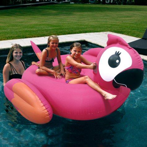 Giant Pool Float - Parrot
