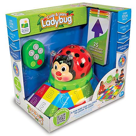 Code & Learn! Ladybug