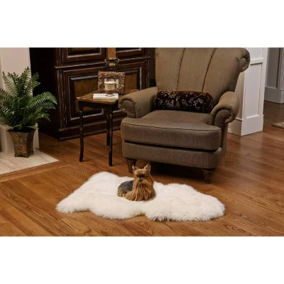 100 Genuine Sheepskin Rug 41 x 23 Sams Club