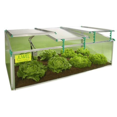 BioStar 1500 Premium 8mm Twin-Wall Polycarbonate Cold Frame